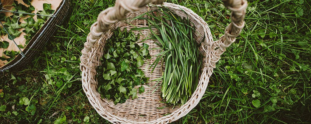Woven basket with green vegetables